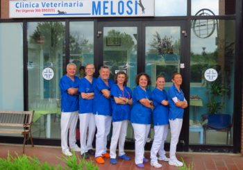 Staff Clinica Veterinaria Melosi