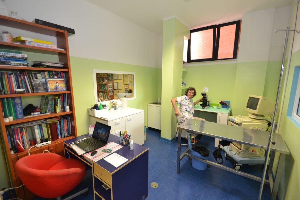 Ambulatorio 2 della Clinica Veterinaria Melosi - Cecina