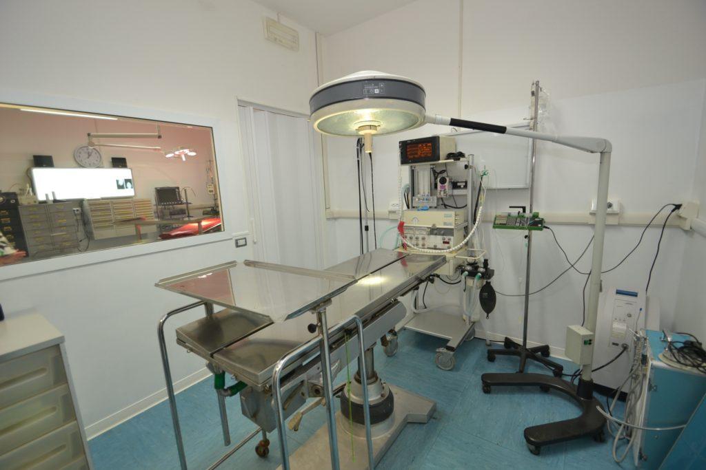 Sala operatoria della Clinica Veterinaria Melosi - Cecina