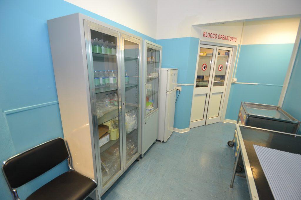 Farmacia della Clinica Veterinaria Melosi - Cecina