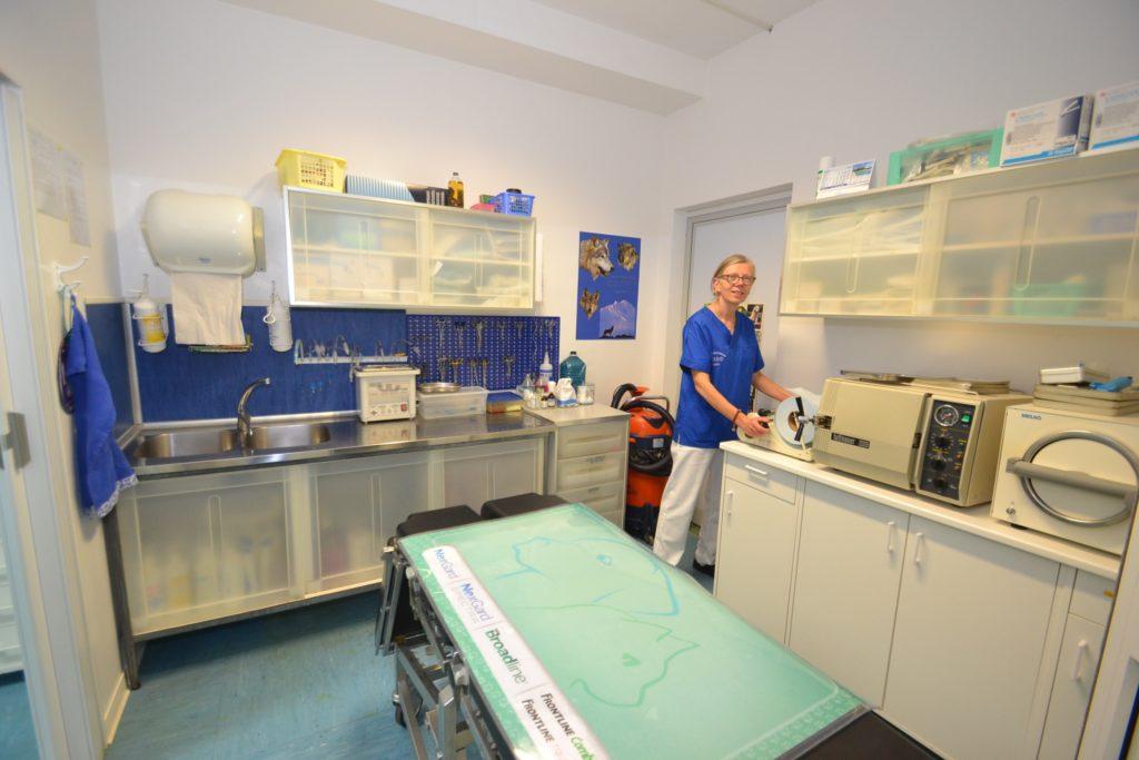 Preparazione chirurgica della Clinica Veterinaria Melosi - Cecina