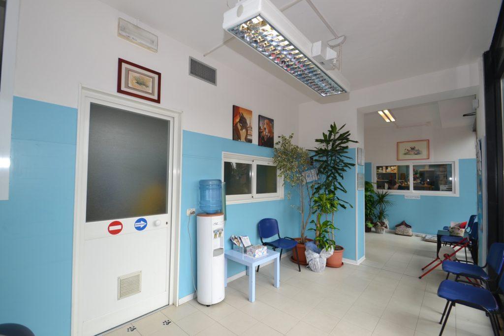 Sala d'aspetto della Clinica Veterinaria Melosi a Cecina